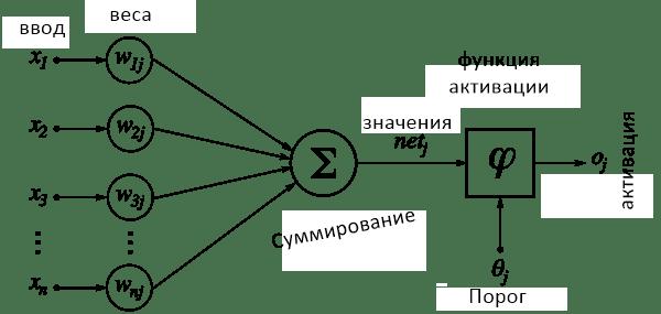 Процесс активации каждого нейрона
