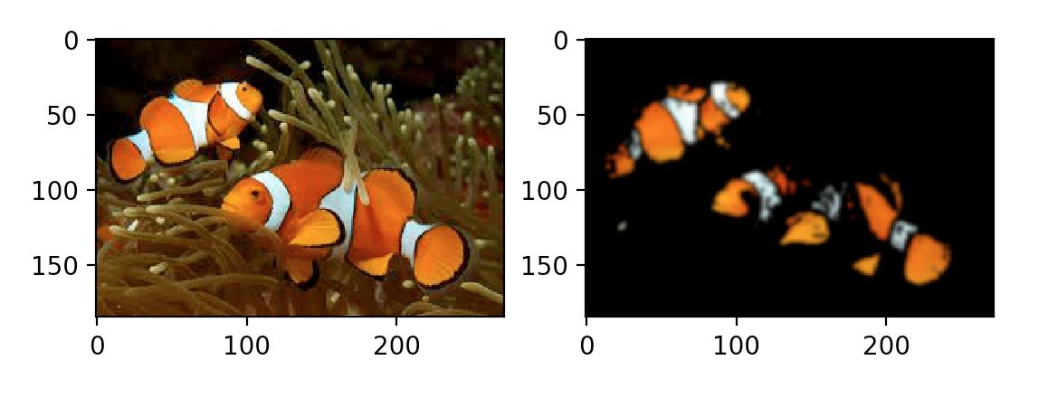 Сегментации рыбы, пример 1