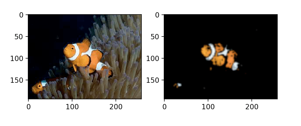 Сегментации рыбы, пример 5