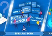 Python для веб-разработки от SkillFactory