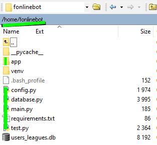файлы проекта (без venv и файлов Pycharm) в папку home/fonlinebot/